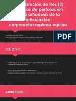 Artrodesis de la articulación metacarpiana equina