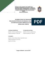 Informe de Pasantias. Yoselinb (4)Ultimo
