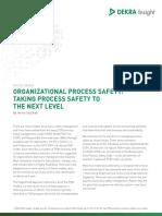 Wp Organizational Process Safety Us-1
