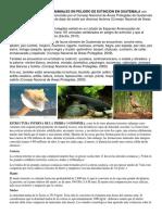 Adaptación de Especies Animales en Peligro de Extinción en Guatemal1