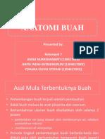ANATOMI BUAH_KELOMPOK 7.pptx
