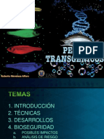 Mendoza_PECES-GM transgenesis.pdf