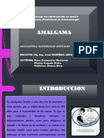 EXPO Amalgama