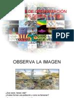 nivelesdeorganizacindelosseresvivos-100629163533-phpapp02