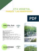 Paleta Vegetal Las Mariposas