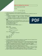 Examen de Informatica Aplicada