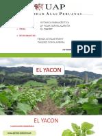 El Yacon Diapositivas Exponer