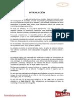 PLAN_POLLOS_A_LA _LEÑA.docx