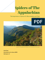 spiders of the appalachian
