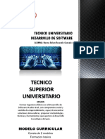 Tecnico Universitario Desarrollo de Software