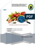 Informe de Alimentos