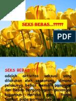 Seks Bebas
