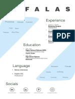resume style options
