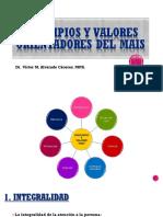 02 Principios Integradores Del Mais