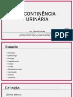 capacitação incontinência urinária
