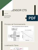 CTS Sensor