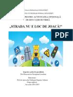 optional_educatie_rutiera.docx