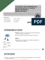 INTERLEUCINA-6-1