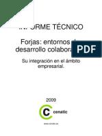 informe_forjas_cenatic