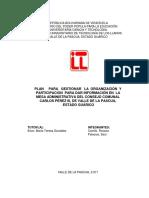 Proyecto Plan Para La Organizacion de La Mesa Administrativa Carlos Perez III