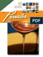 Livro vale do guaribas.pdf