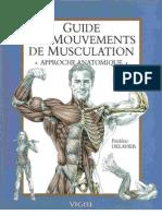 anatomia_musculacion