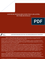 350721681-Agentii-de-Degradare-Si-Efectele-Lor.ppt
