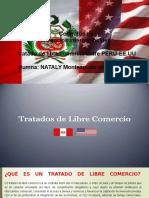 Tlc Diapositiva (2)