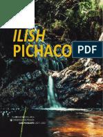 Plan Maestro Ilish Pichacoto
