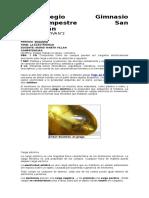 GUIA IFORMATIVA  # 2 CARGA ELECTRICA Y CORRIENTE ELECTRICA 7°