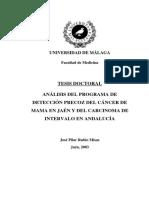Tesis_Doctoral_Jose_P_Rubio.pdf