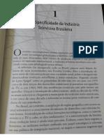 A Especificidade da Indústria Televisiva Brasileira - O Brasil Antenado