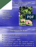 Projeto de irriga__o em manga.pdf