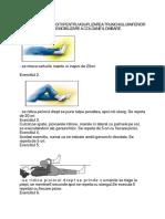 programulwiliams-141123130653-conversion-gate01.pdf
