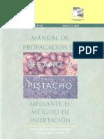 91698622-propagacion-de-pecano.pdf