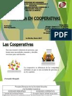 AUDITORIA EN COOPERATIVAS.pdf