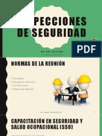 Inspecciones de Seguridad - DS 024-EM
