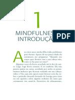 Mindfulness Introdução