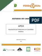 APCA-2011-.pdf