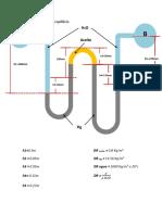 Problema de Mecanica de Fluidos (Grupo 5)