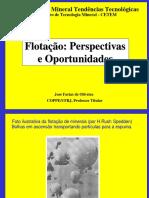 Flotacao Perspectivas Oportunidades Relator 2006