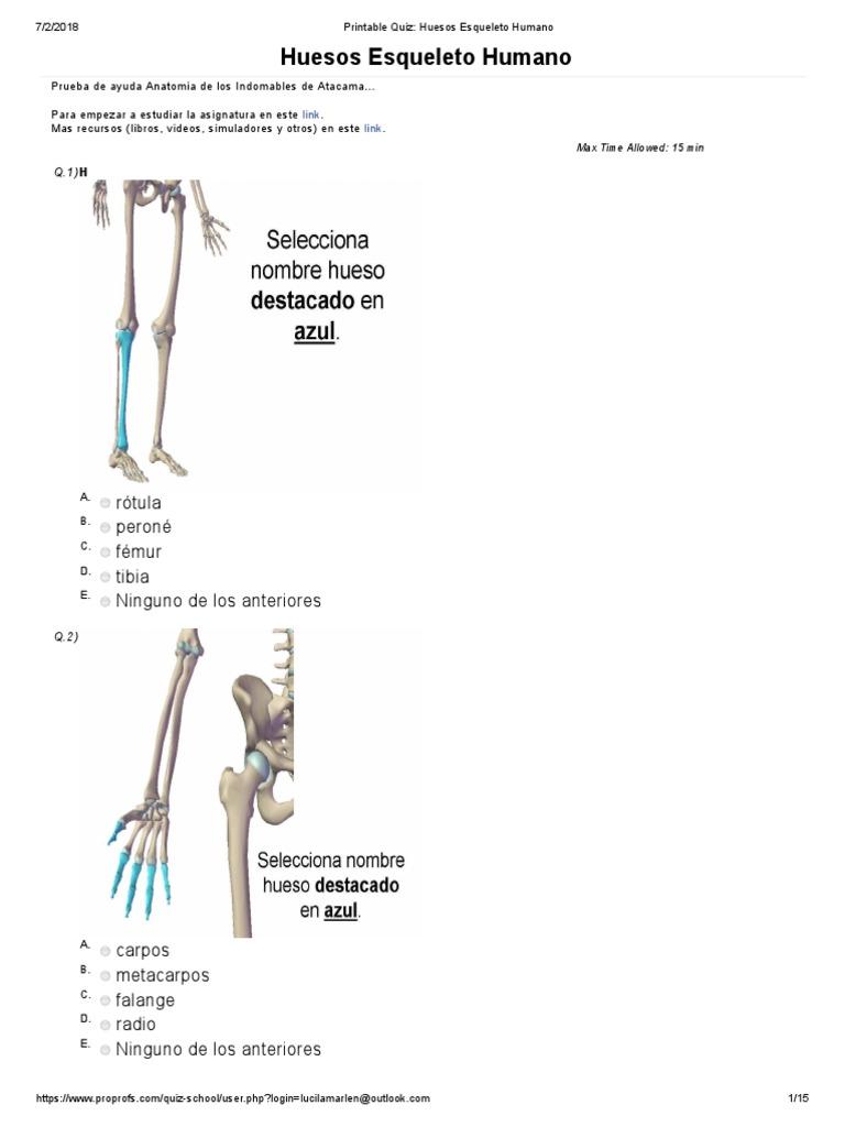 Único Cuestionario Esqueleto Anatomía Humana Fotos - Anatomía de Las ...