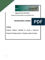 Guia-Practica-Profesional-Ejv-A.pdf