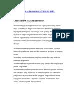 MENOMETRORAGIA