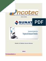 Manual PDT Imprimir