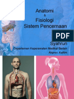 anfis digestive sistem.pptx