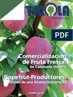 Revista Fruticola 2011 Diciembre (1)