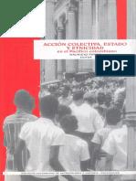 ACCION_COLECTIVA._ESTADO_Y_ETNICIDAD_EN.pdf