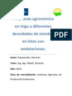 Gasparotto - Respuesta Agronómica en Trigo a Diferentes Densidades..