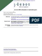 Small RNA Guides for de Novo DNA Methylation in Mammalian